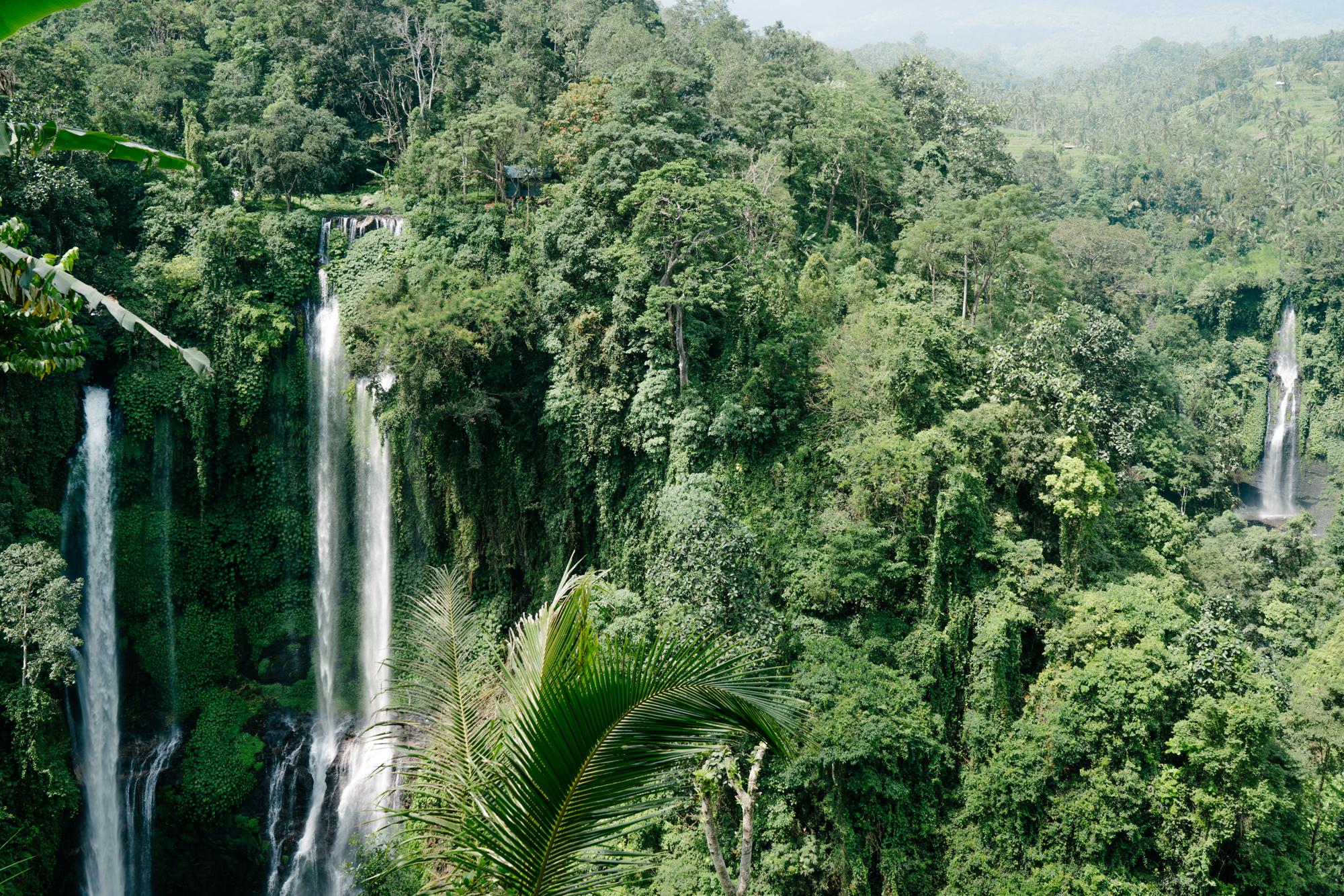 Hike to Sekumpul Waterfall in Bali