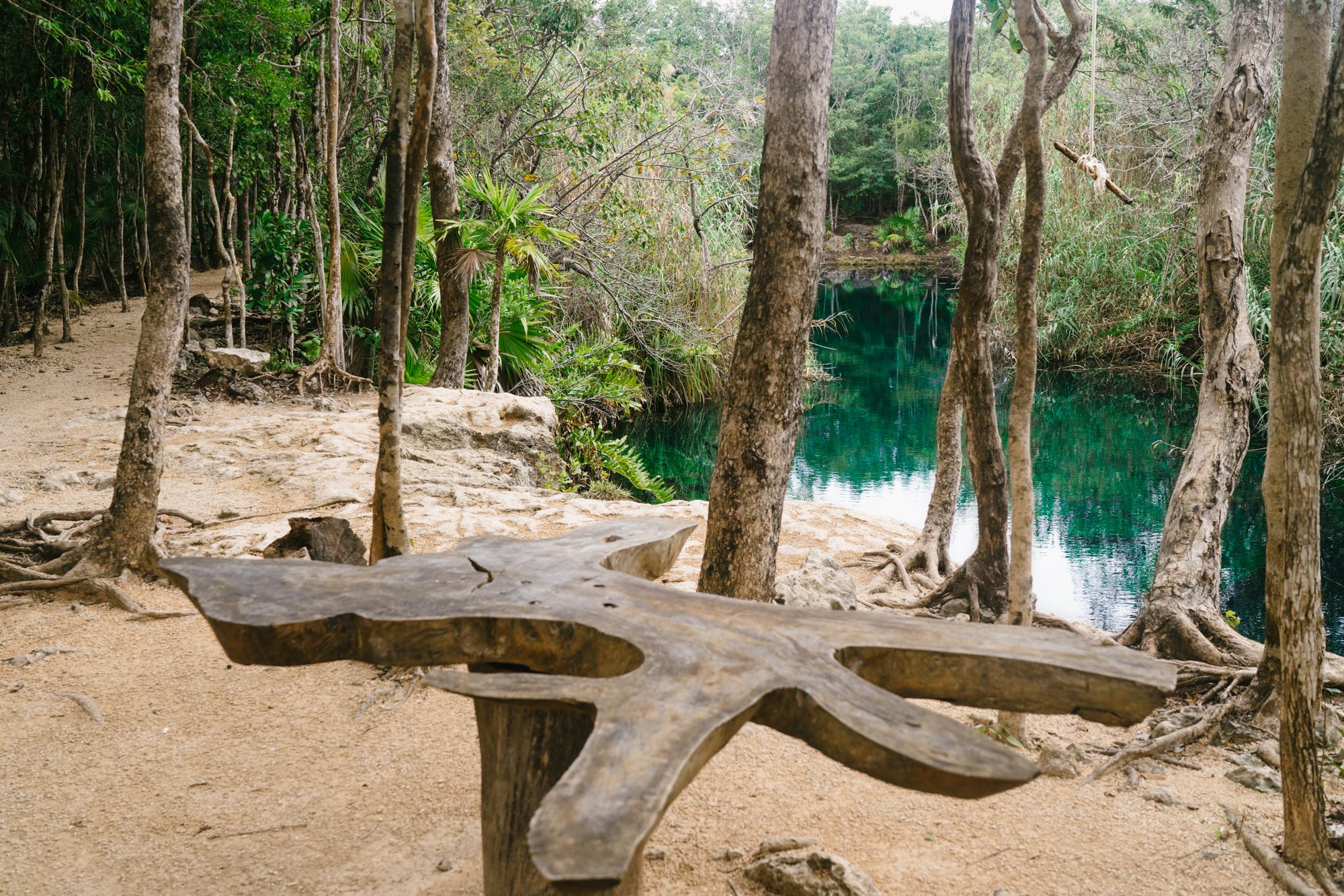 Cenote Escondido Rope Swing