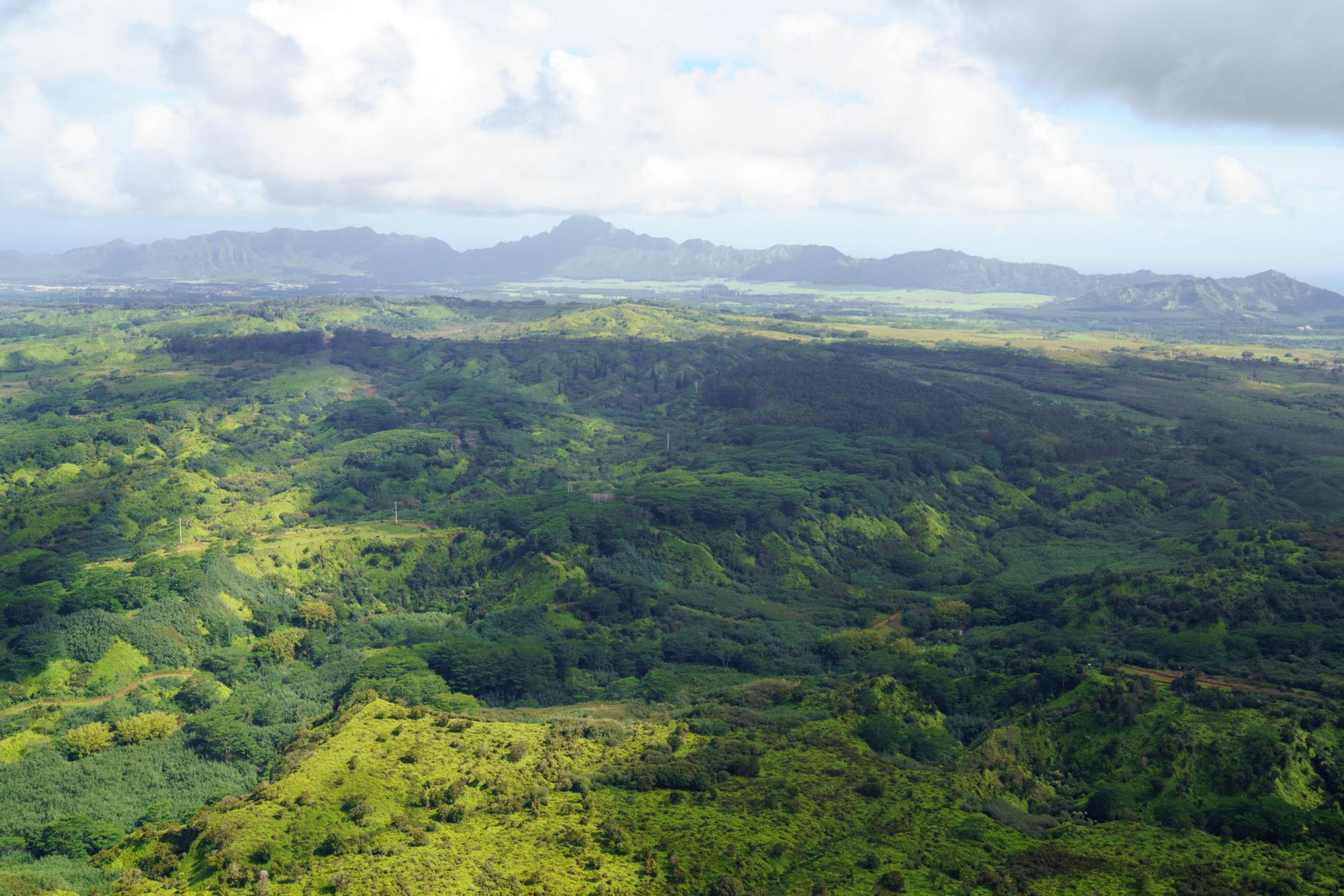 Aerial view of Kauai   Never Settle Travel