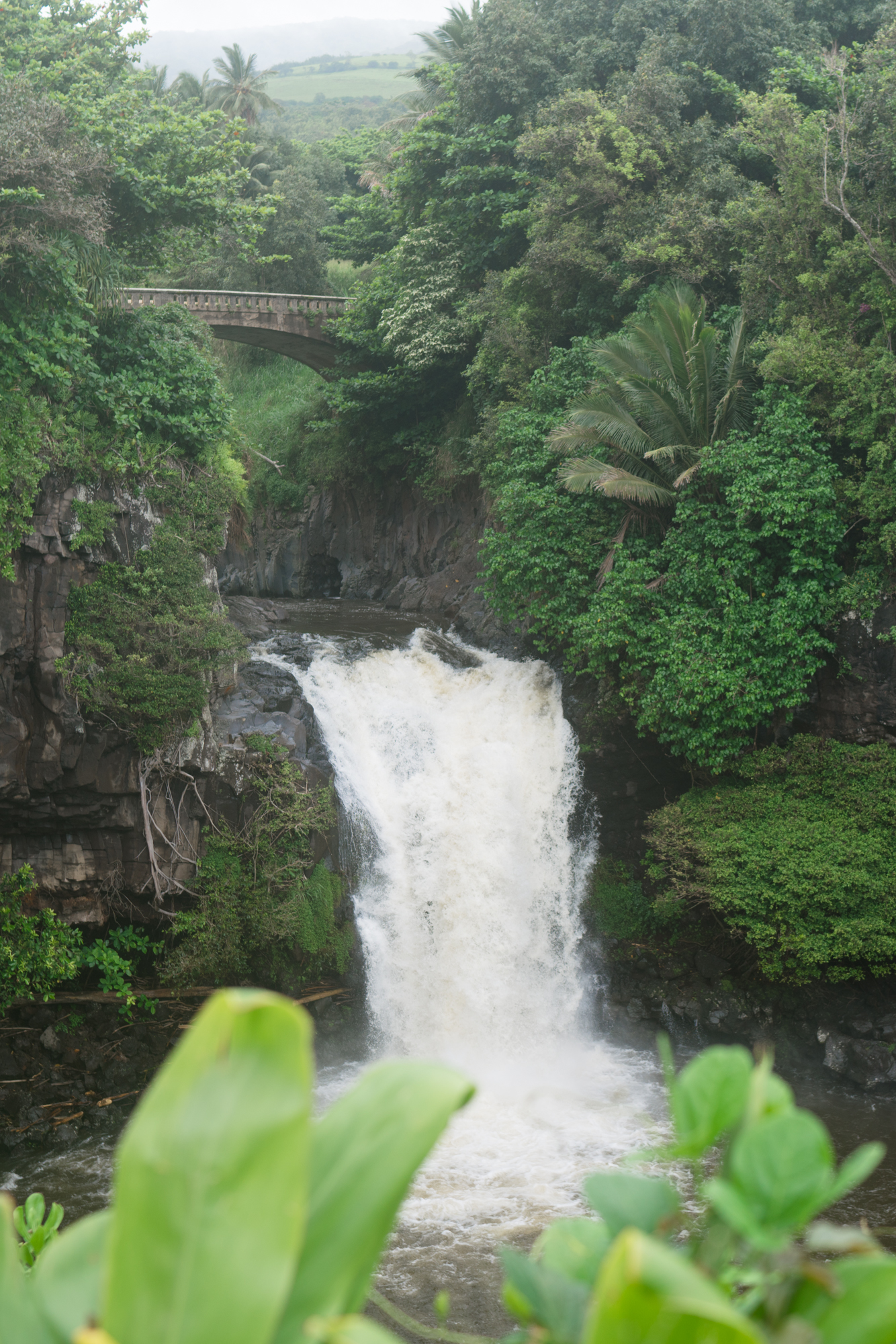 Oheo Gulch Maui | Never Settle Travel