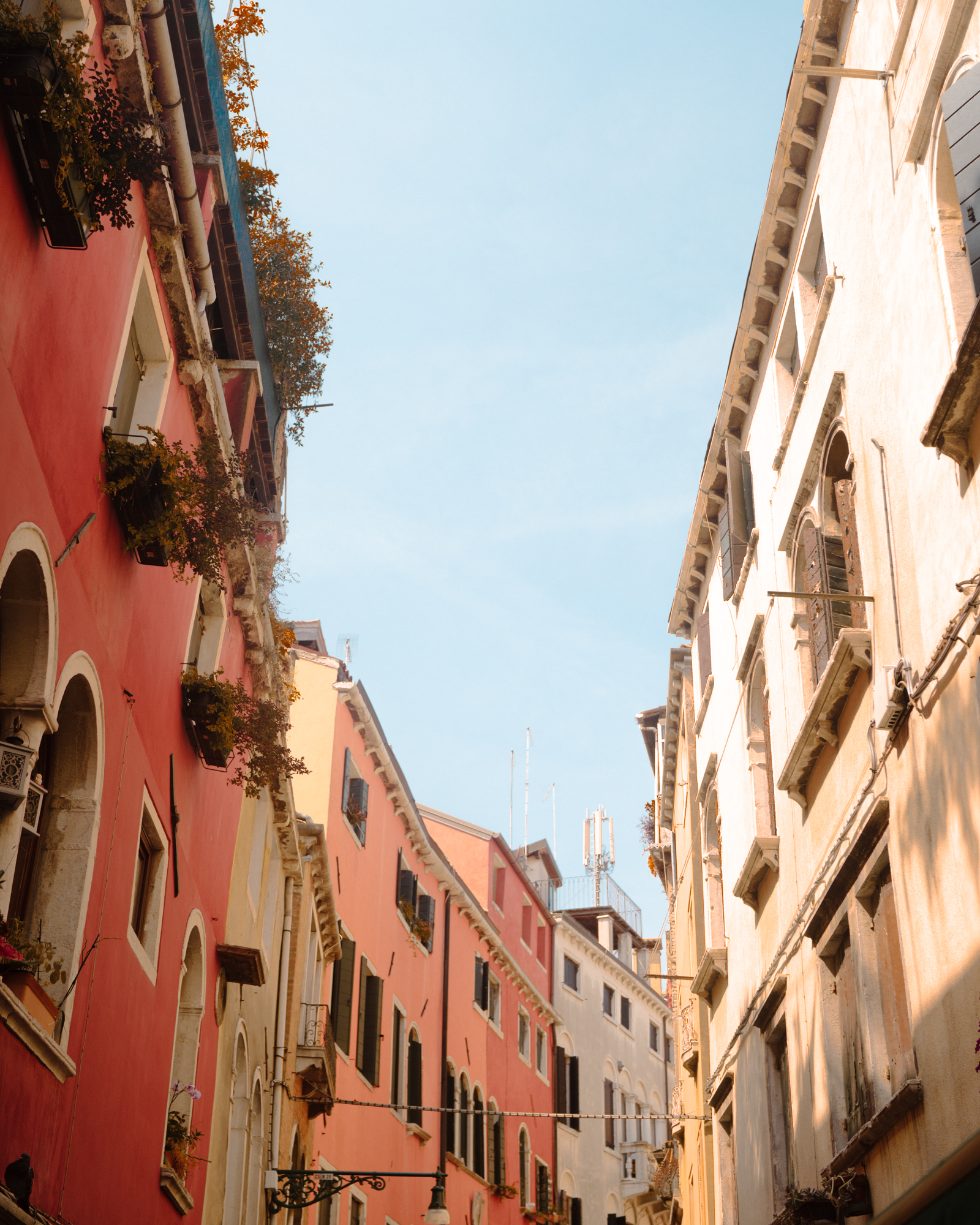 Colorful buildings in Venice Italy