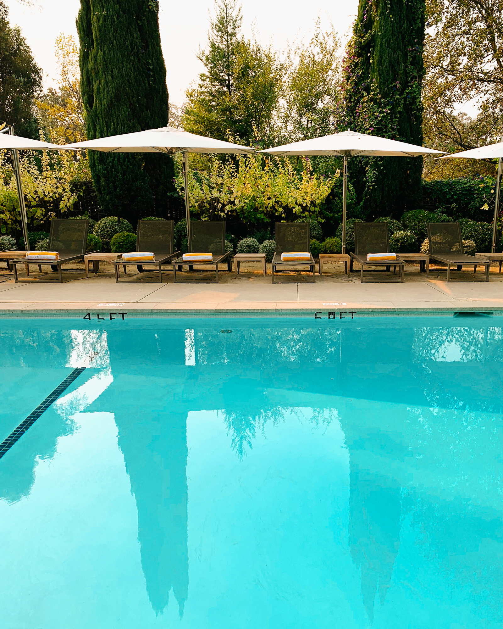 Healdsburg Travel Guide