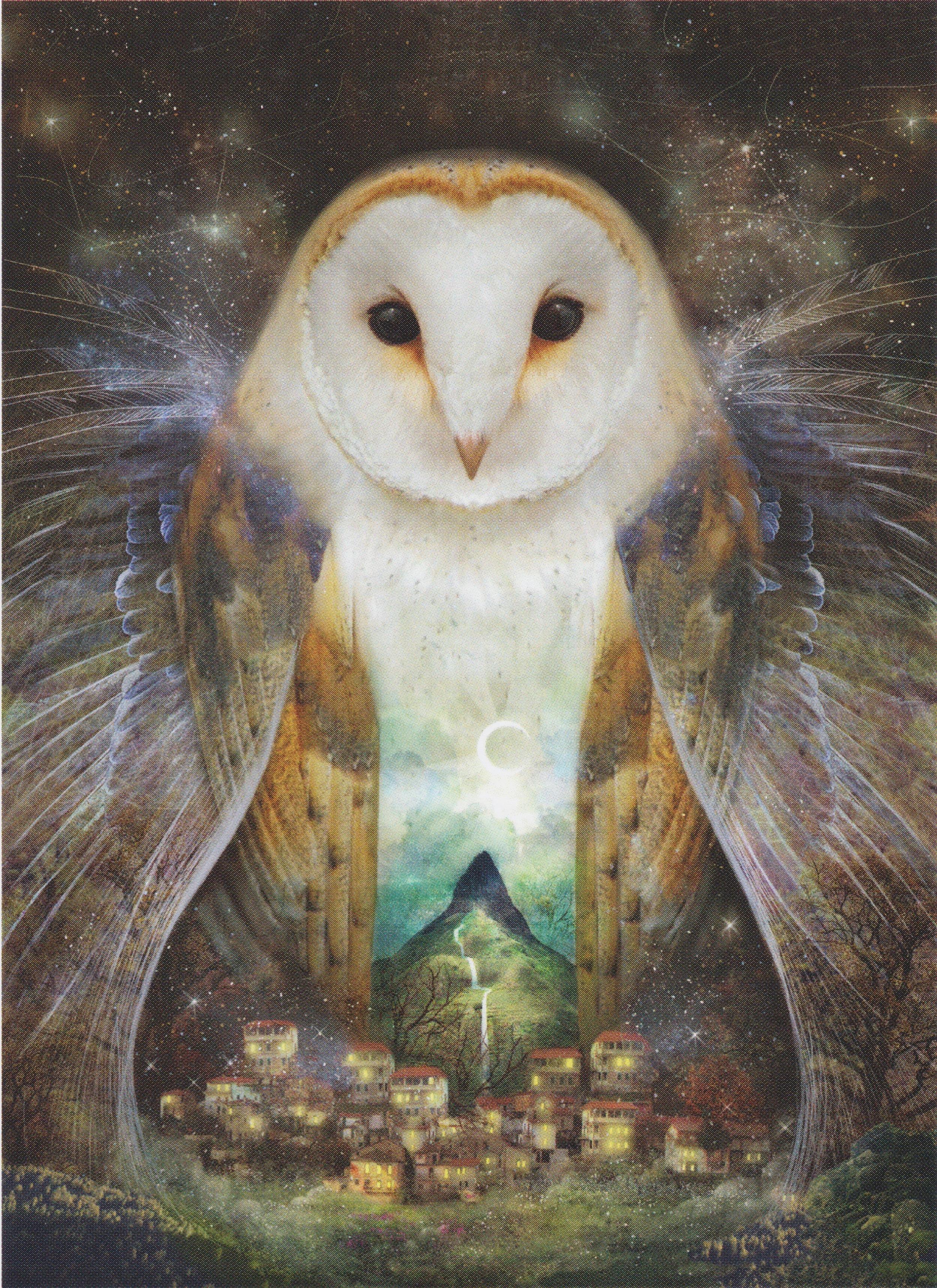 Owl Mountain Moon by, Liza Falzon
