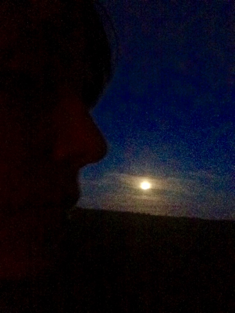 Moon Shadow #4