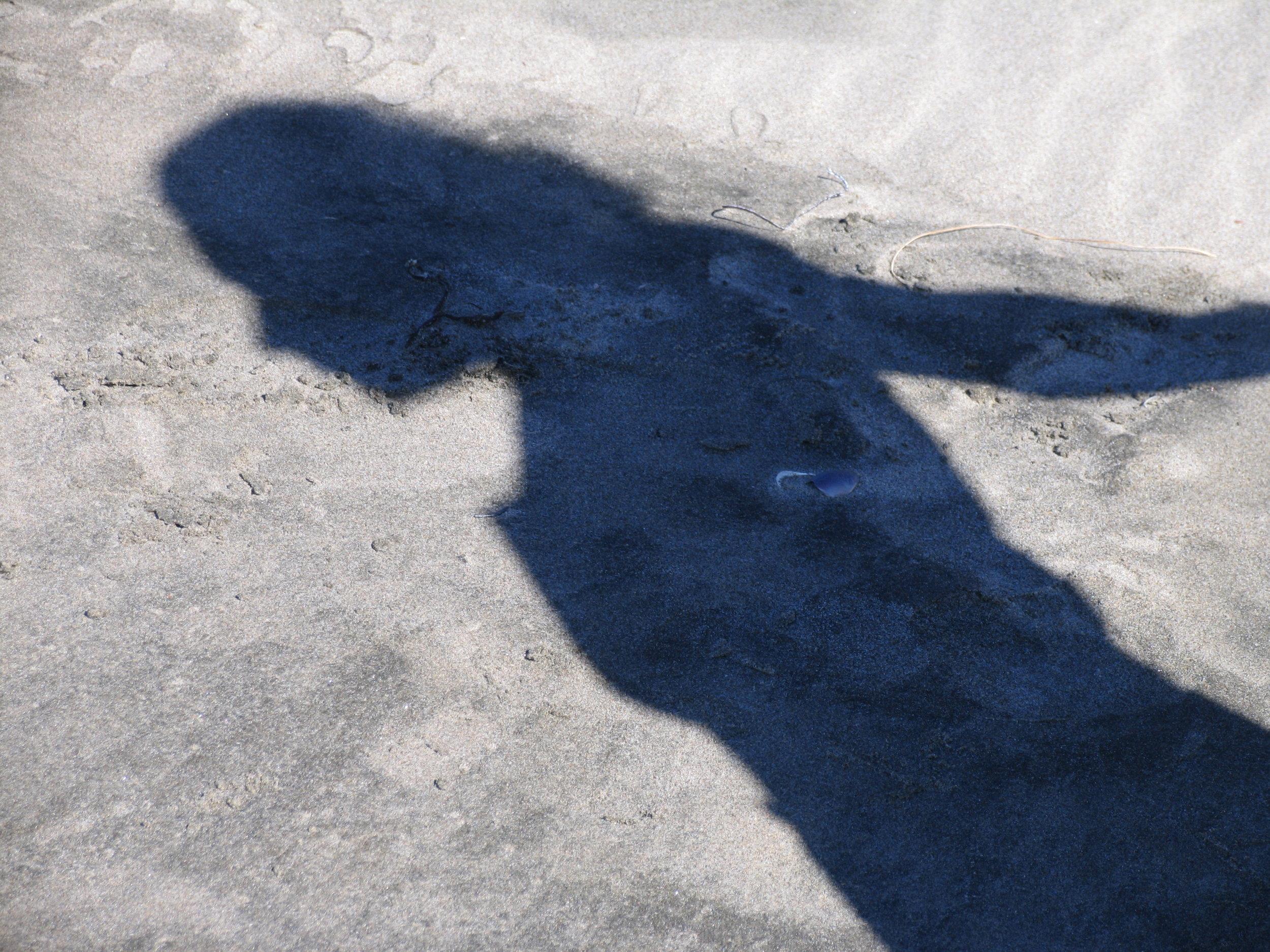 h.c.love shadow of my former self