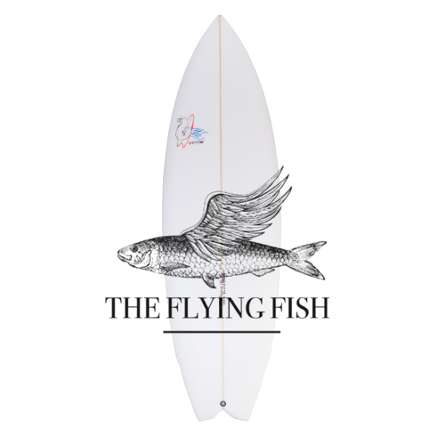 Flying Fish - Small Wave Performance Cruiser