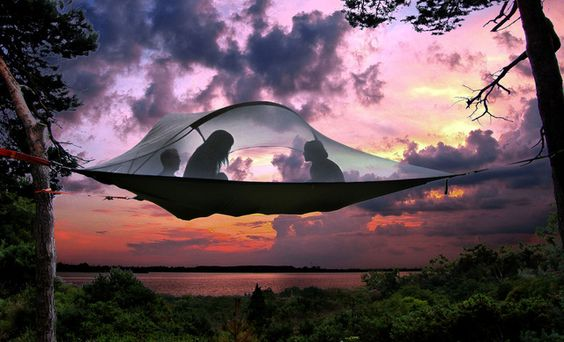 A hammock tent. Click through for more information!