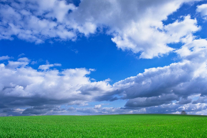 John_Stuart_Landscape1-0184.jpg
