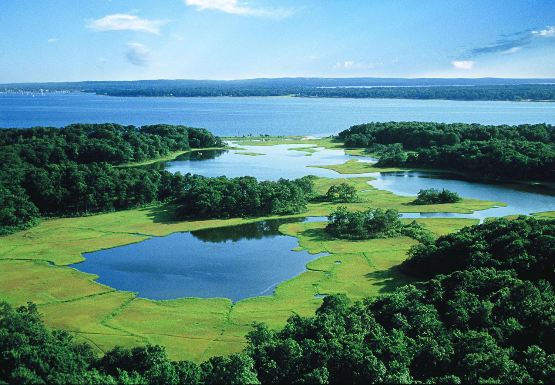 Aeriel wetlands N.fork on c.jpg