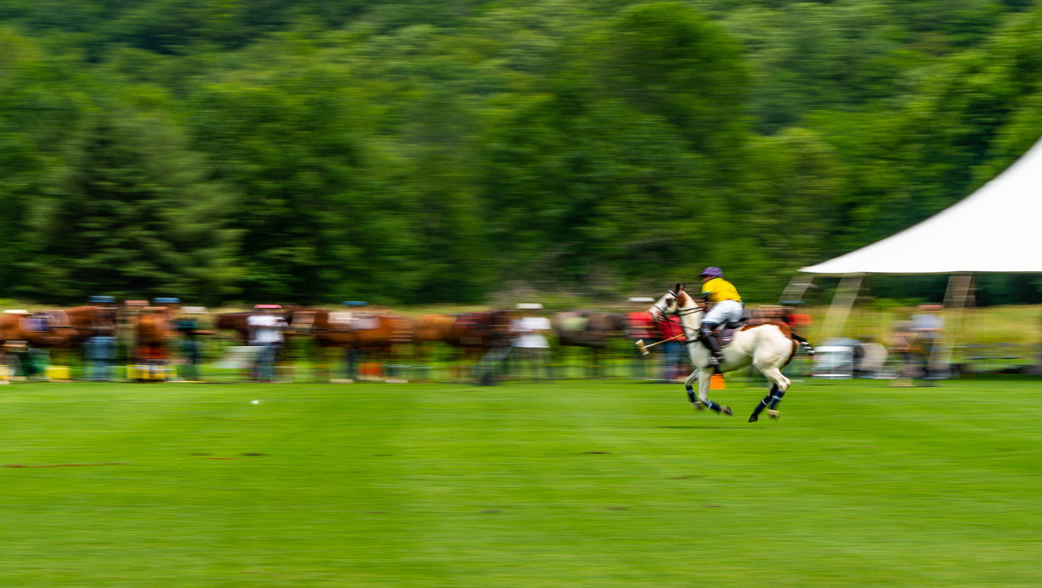 All alone this polo player lines up the shot at mashomack polo club in Pine Plains, ny.  Polo is a contact sport..jpg