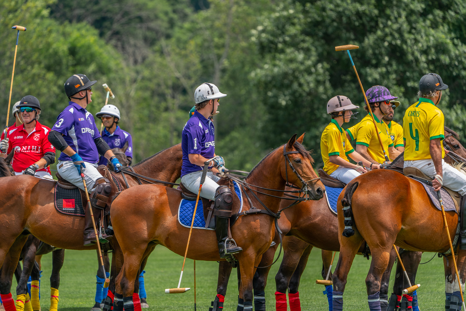 Polo players and their ponies at the start of Mashomack polo match.jpg