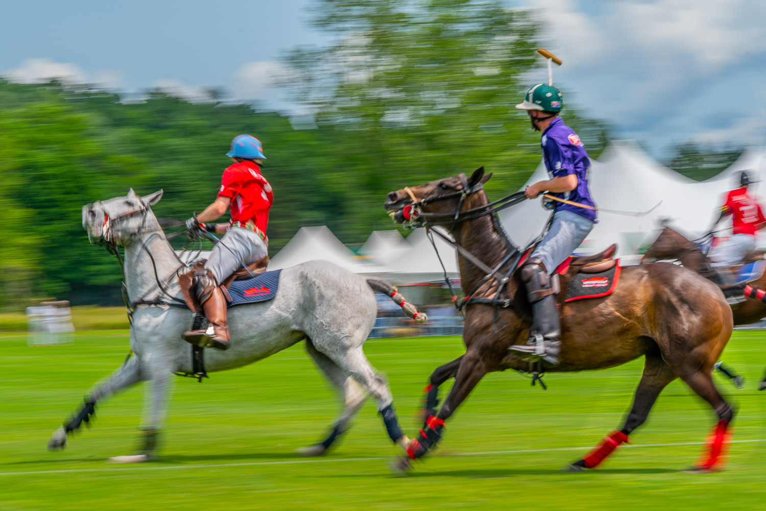 Polo ponies stop on a dime muscles flexed at the mashomack polo club in pine plainsj, ny.  The action blur creats a sense of speed and movement..jpg