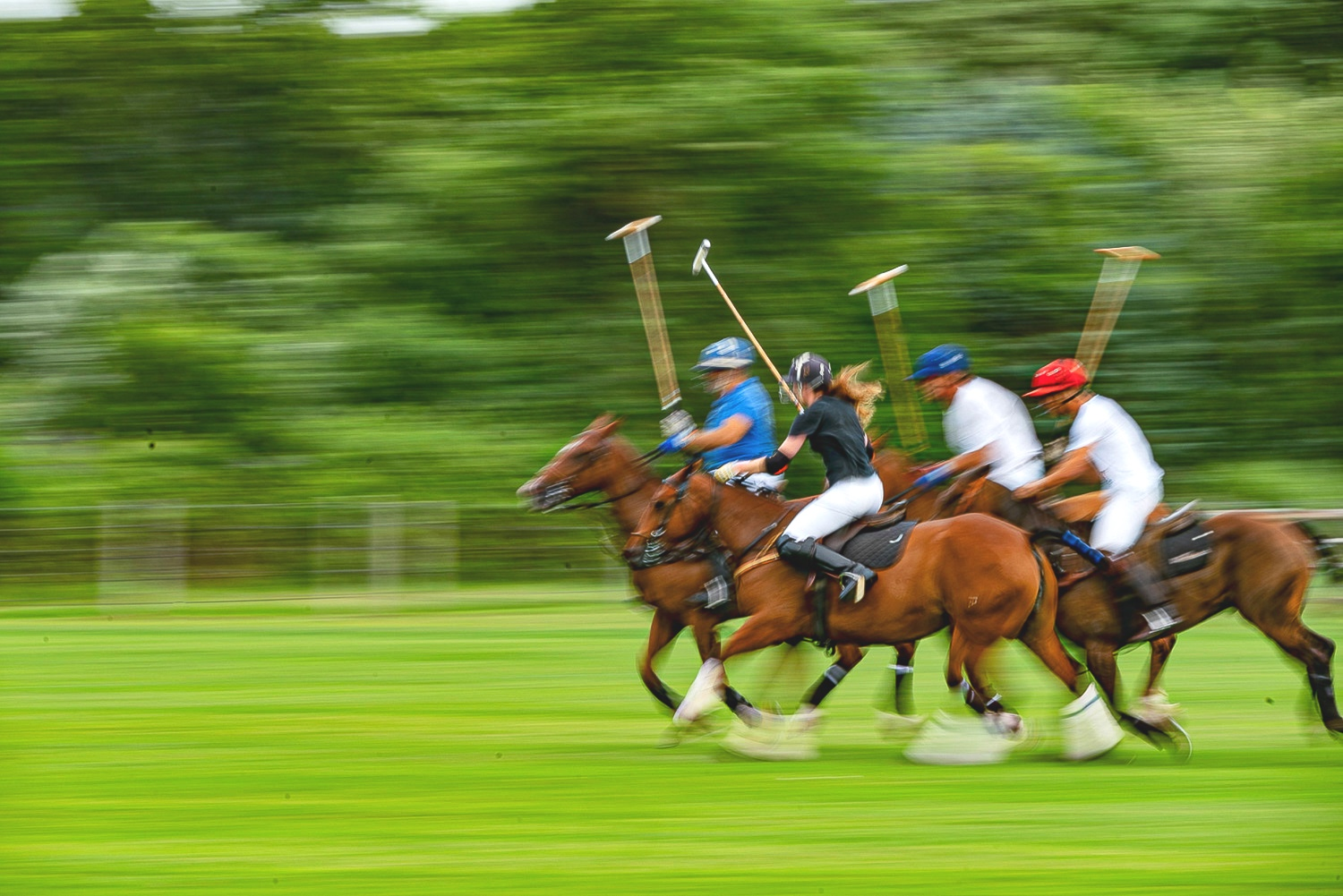 Photographs of the Fox Hunt in North Salem, NY and Polo