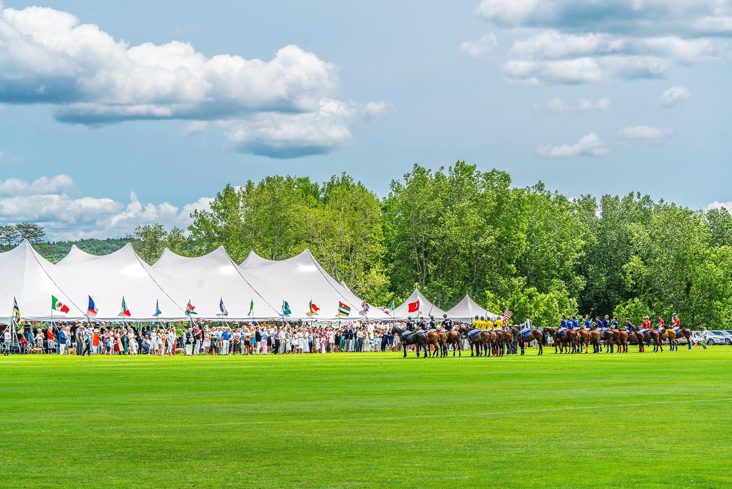 polo ponies and riders line up in front ot the grandstands prior to the match. .jpg