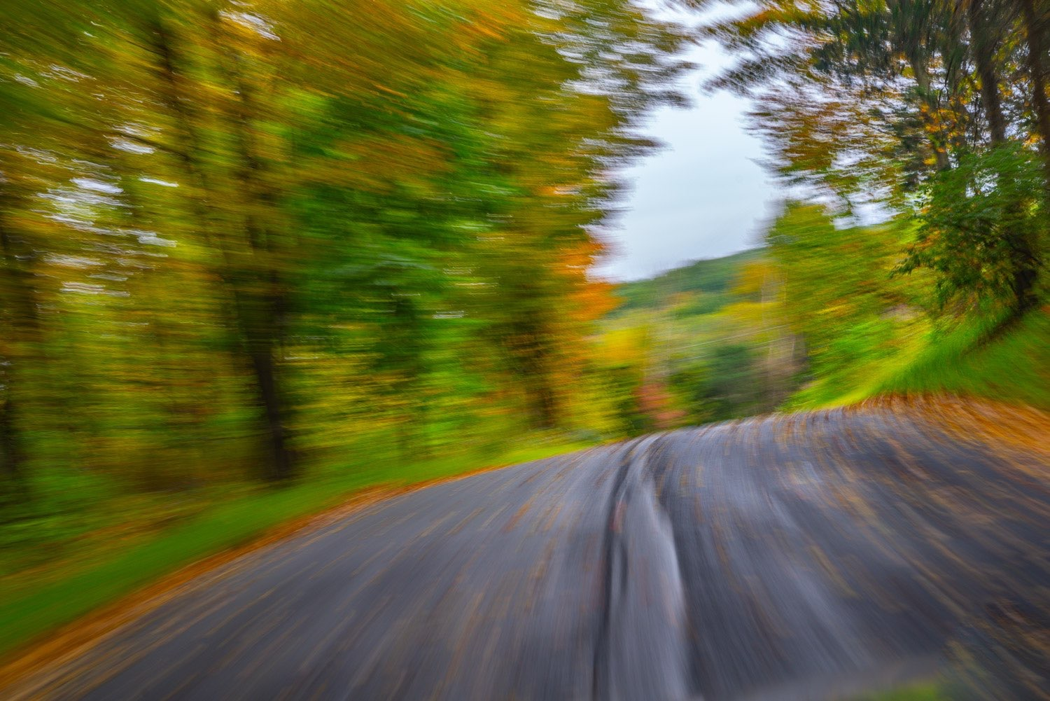 Fall colors blend together as the camera moves during the exposure.  Speed , color and motion amplify a palate provided by nature. photo johnstuartstudio-compress.jpg