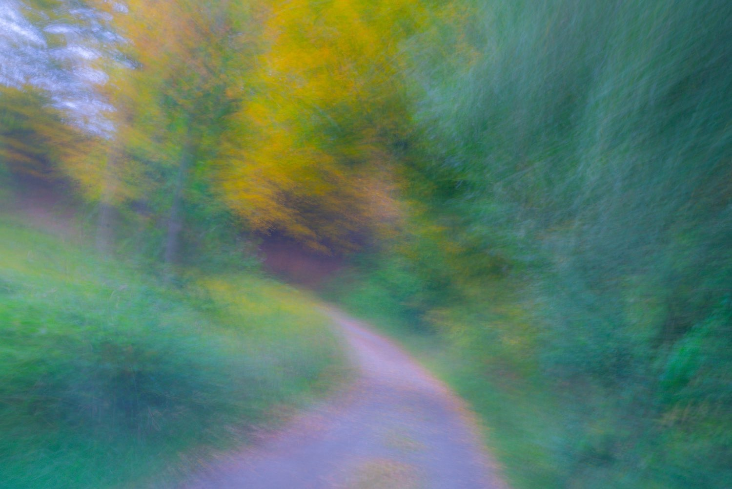 Make your own path down a country road. This painterly photograph was created by johnstuatrstudio-compress.jpg