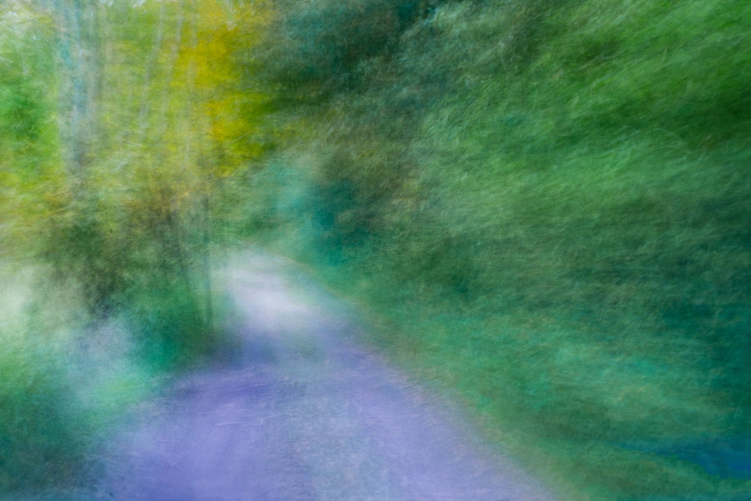 NY.  johnstuartstudio, Using movement in a still photograph creates painterly results. The abstract was created on a country road in Pine Plains NY.  johnstuartstudio-compress.jpg