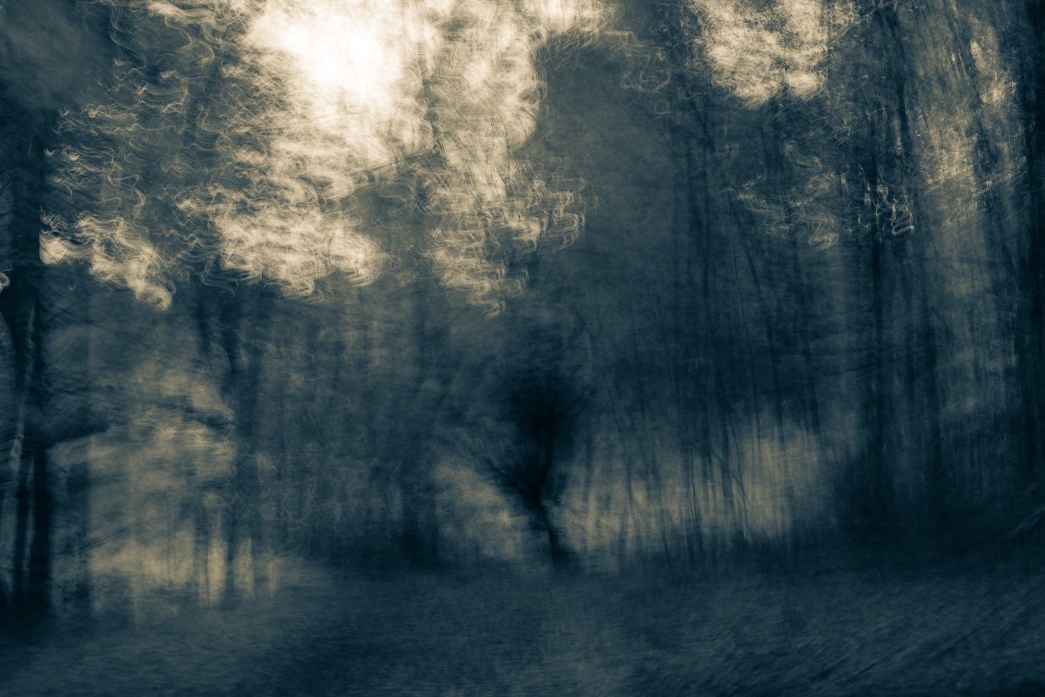 This black and white photograph of a country road has a sense of movement. johnstuartstudio-compress.jpg