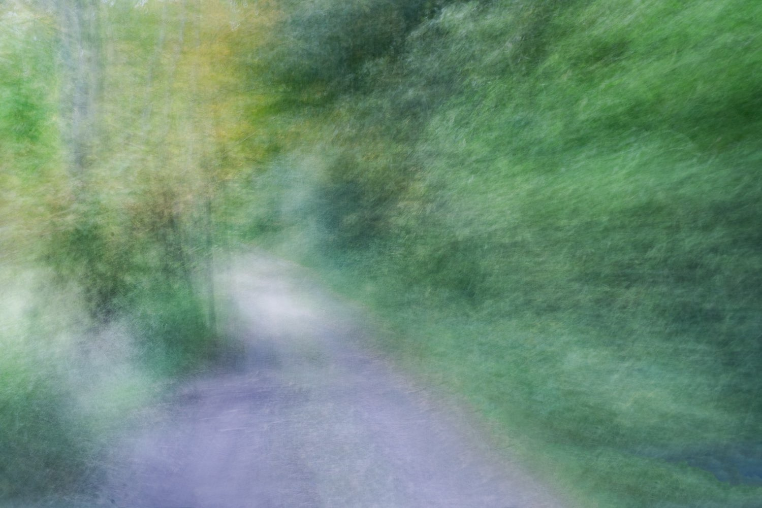 Using movement in a still photograph creates painterly results. The abstract was created on a country road in Pine Plains NY.  johnstuartstudio, -compress.jpg