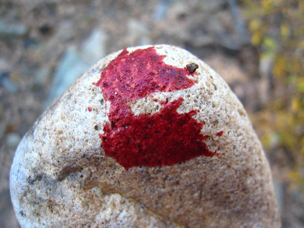 bloody rock 2.jpg