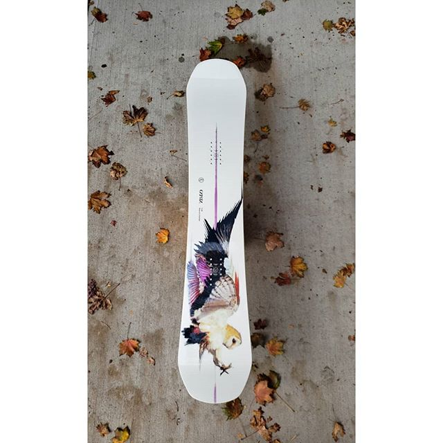 Oh. Ok then. ❤❤❤ Capita Super Corp bringing in the winter heat. The award winning Birds of a Feather & Space Metal Fantasty decks  are making the board wall look sooo good.  #giftsfromthemothership #capita #capitasupercorp #pentagonboardshop #penticton