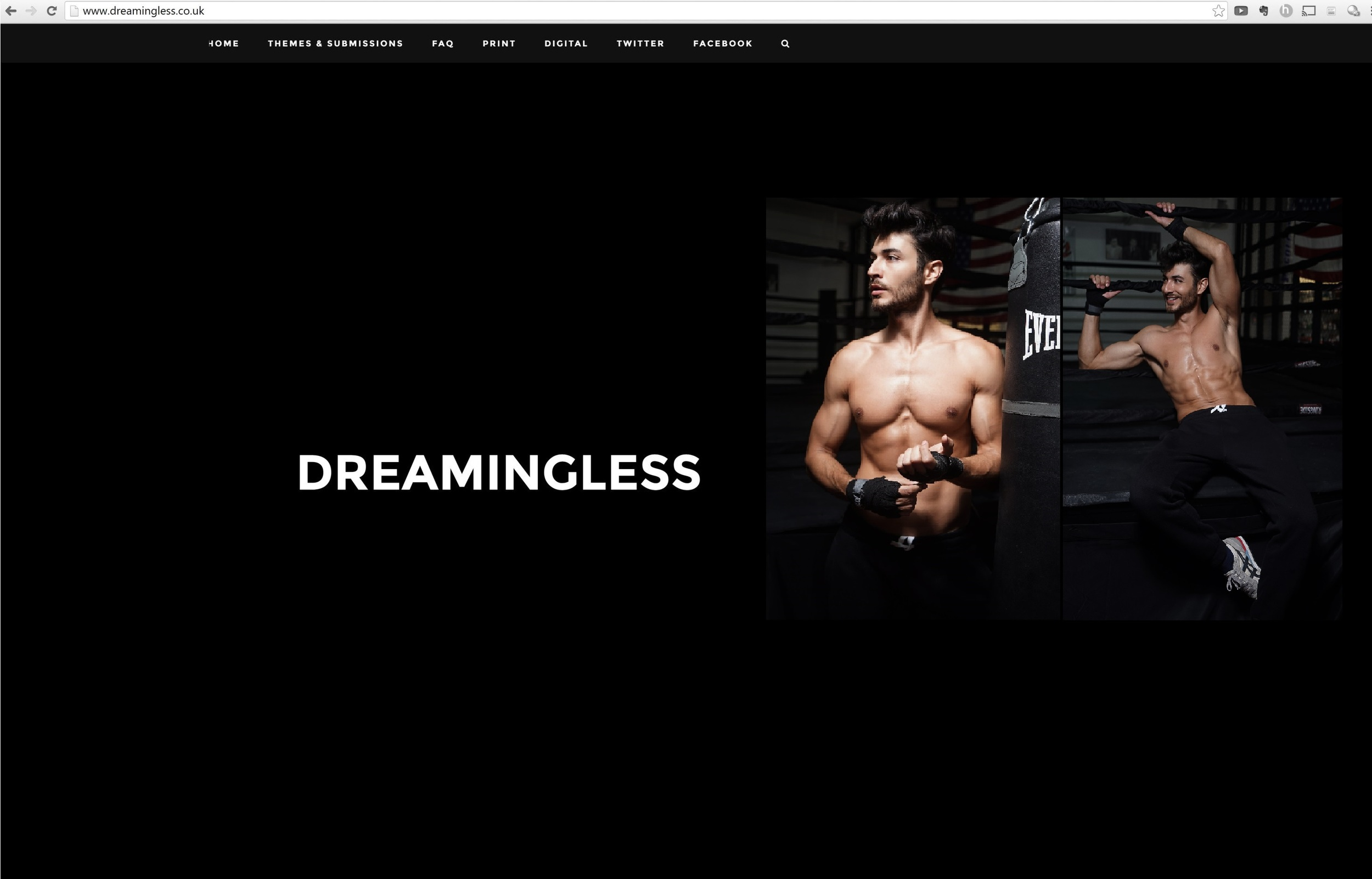 Dreamingless UK Print Website Screen Grab.JPG
