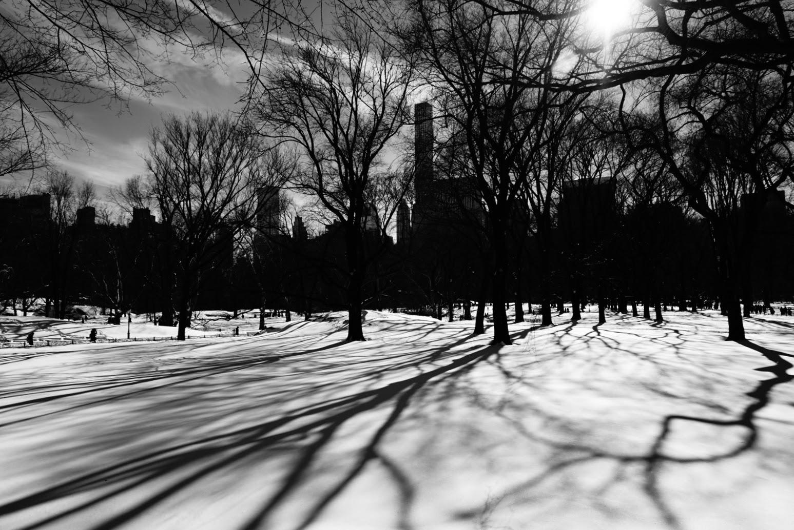 Central Park, New York (2016)