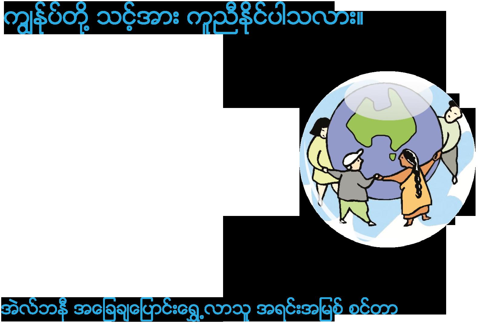 Burmese - Albany - front