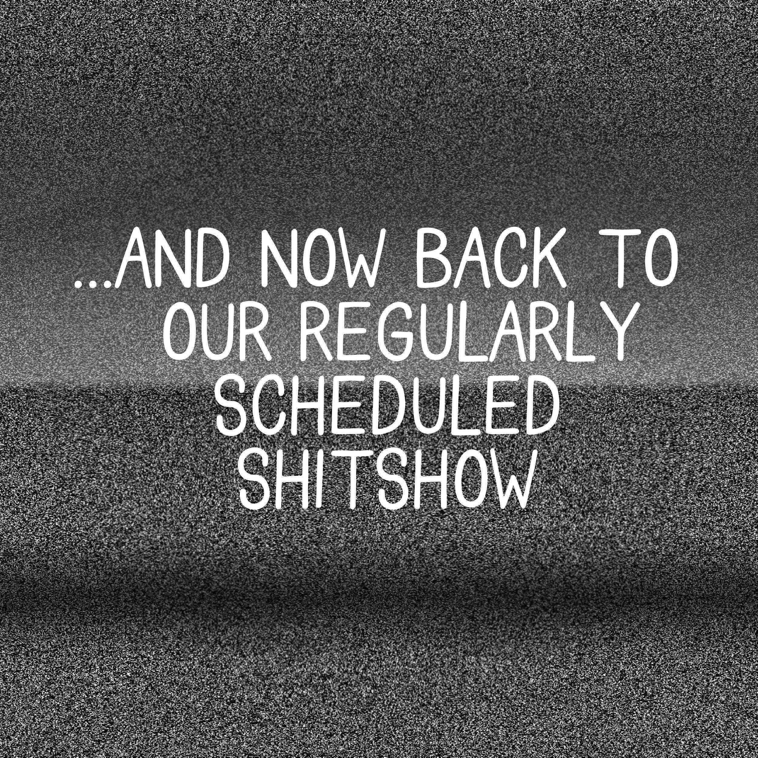 regularlyscheduledshitshow-01.jpg