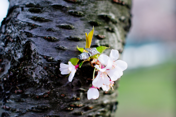 10_CarlyGaebe_SteadfastStudio_EngagementPhotography_Gay_Lesbian_Brooklyn_Colorful_Rings_Cherryblossoms.jpg
