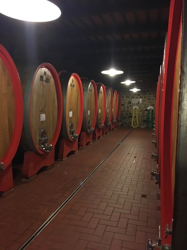Barrel room at Poggio di Sotto