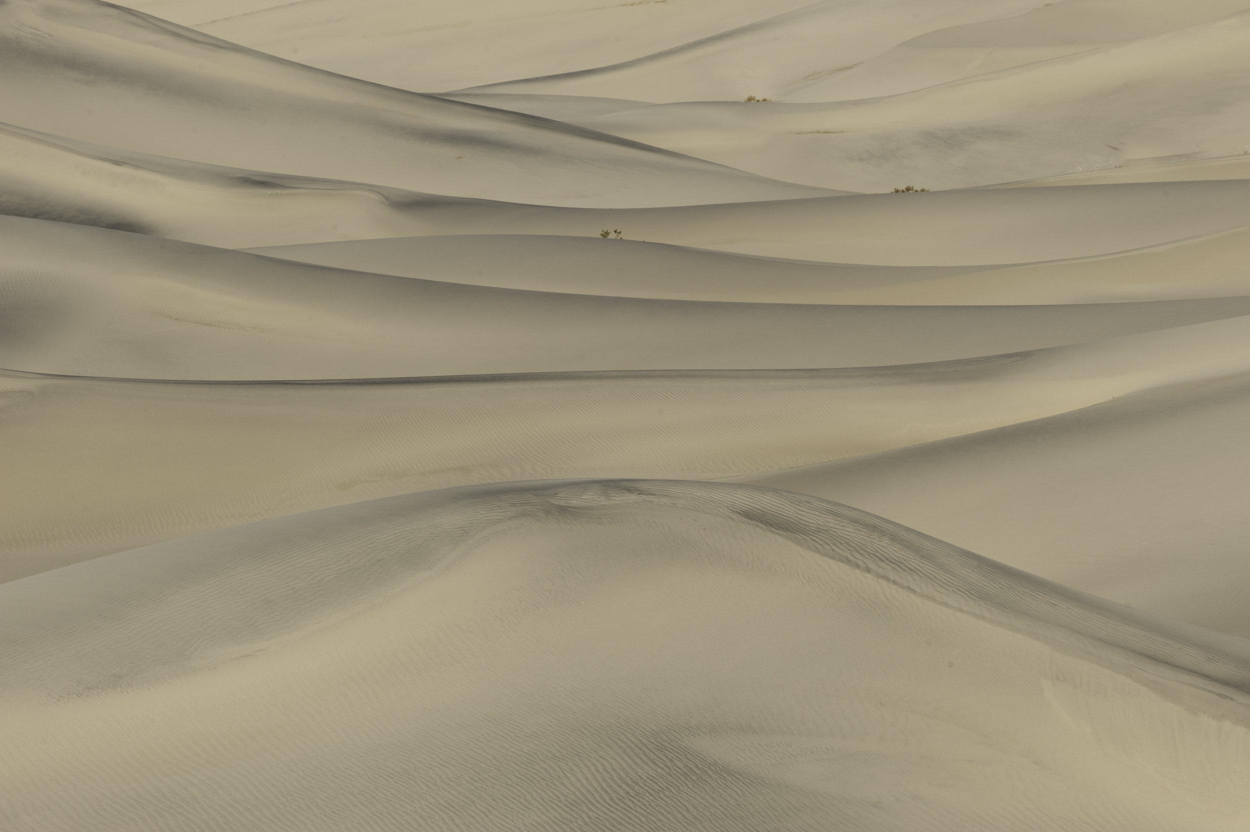 Tom Dwyer - Visionary Death Valley - Feb 2017
