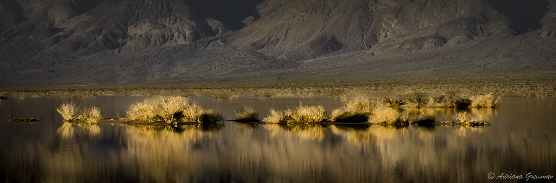 Adriana Greisman - Visionary Death Valley - Feb 2017