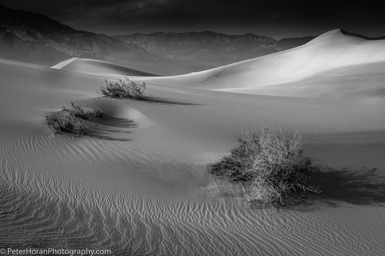 Peter Horan - Visionary Death Valley: Feb 2018