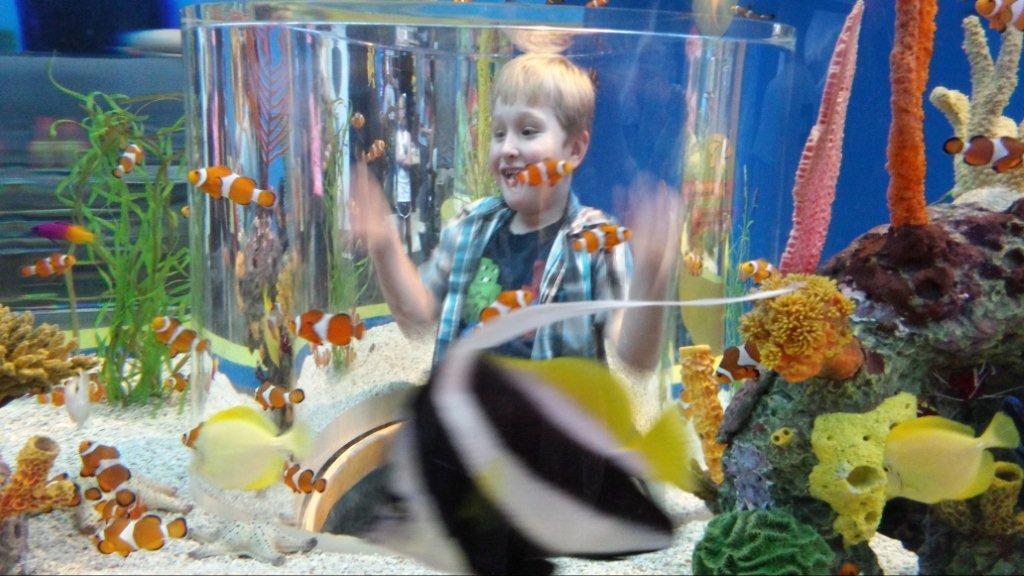 Jacob at Gatlinburg Aquarium Icenhower.jpg