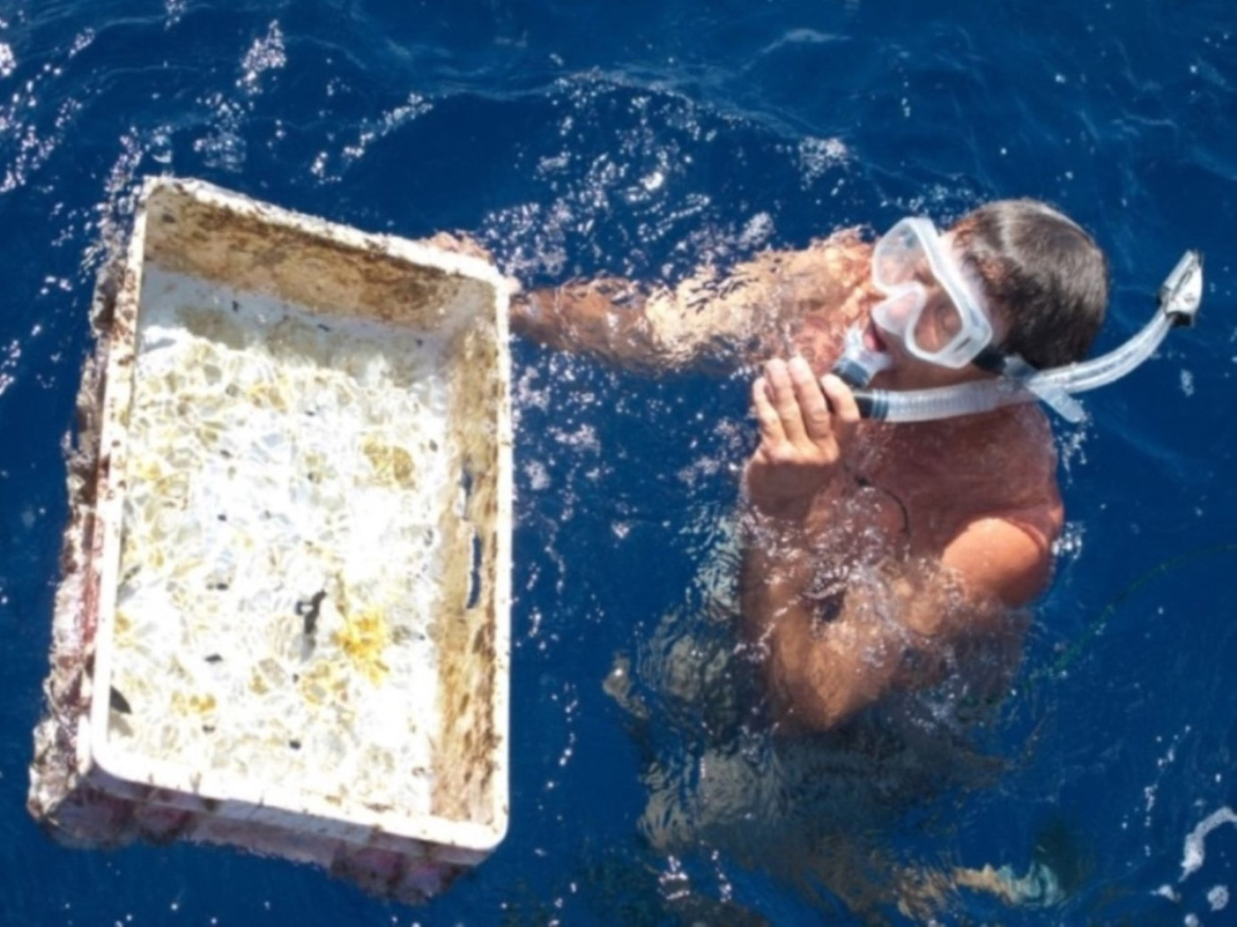 charlie.snorkeling1.jpg