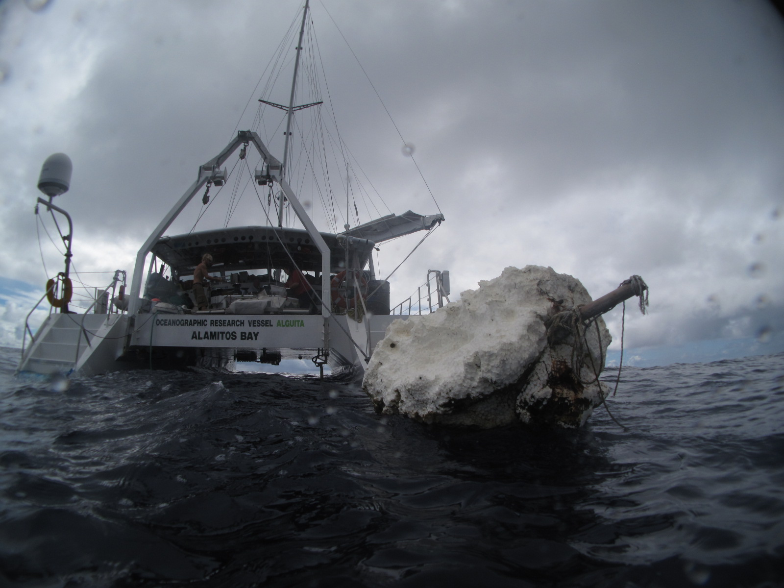 2009_north_pacific_gyre_sea_debris_alguita_hoshaw.JPG