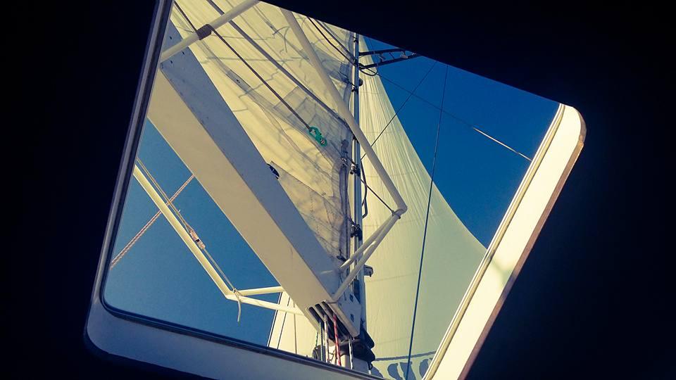 3-4 Alguiita Main Sail.jpg