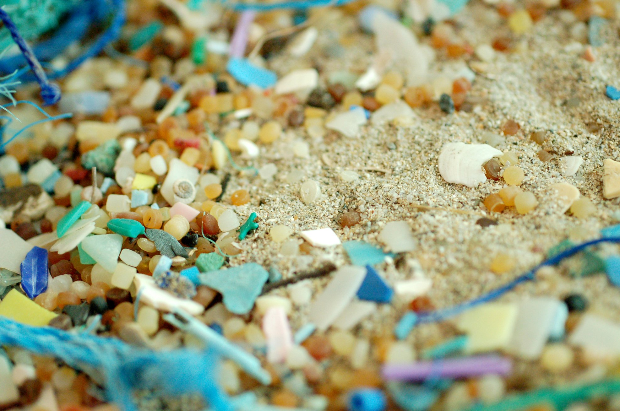 plastic on beach.jpg