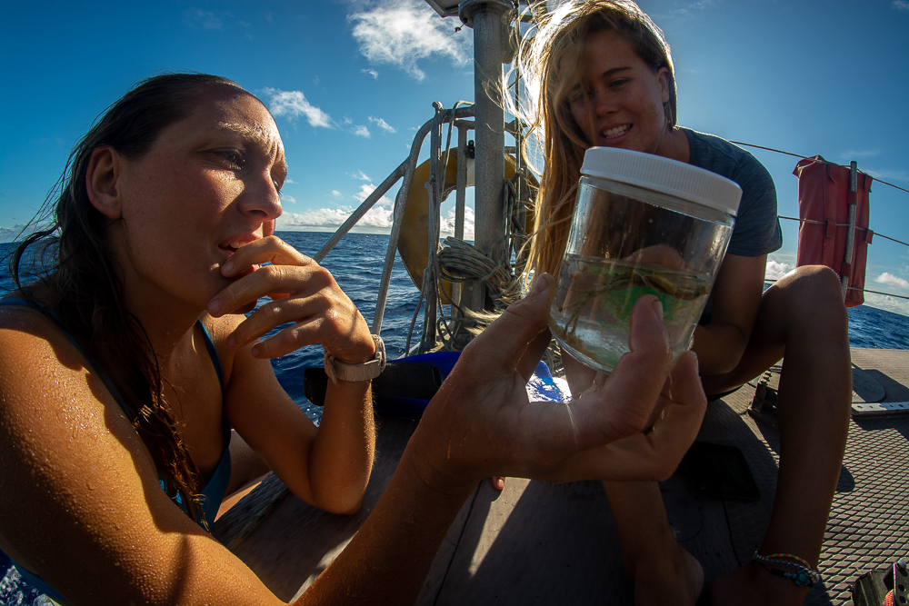 swim team heather and raquelle with sample collected under the Alguita a few hours before.