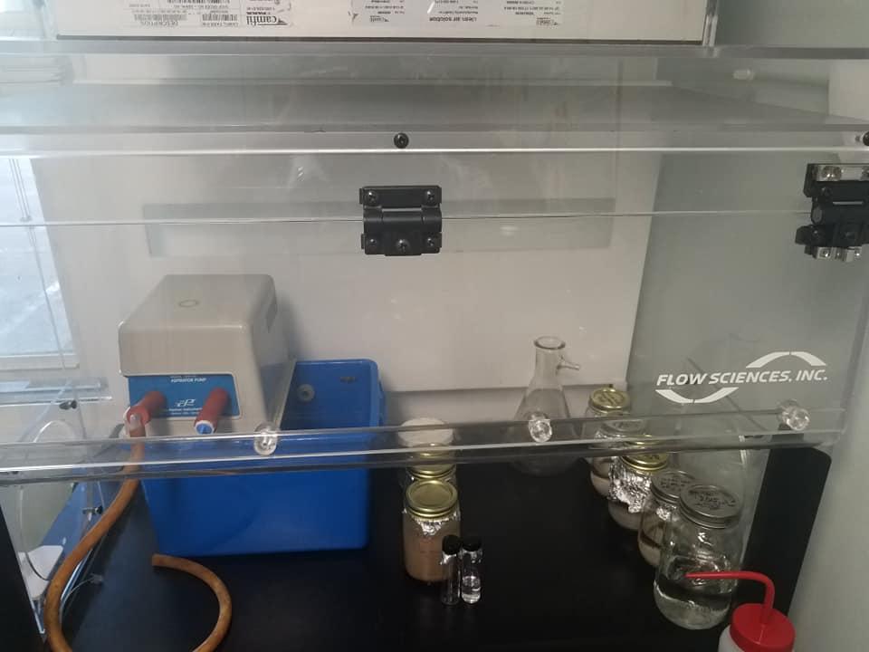 Bonnie's new lab  4.jpg
