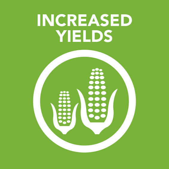 Sq_Increase_Yields.jpg