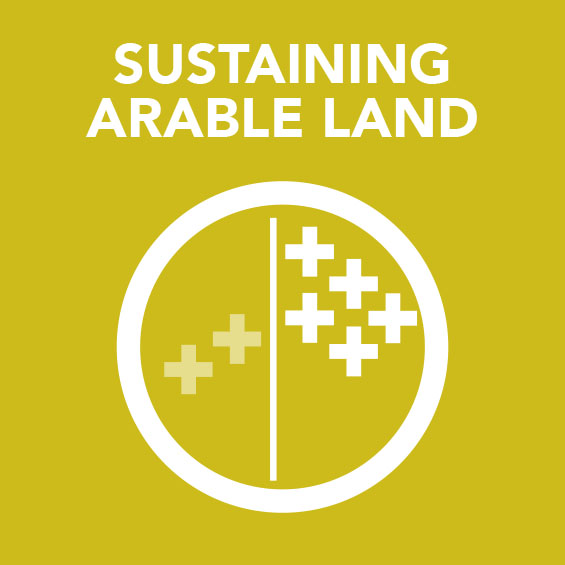 Sq_Sustaining_Arable_land.jpg