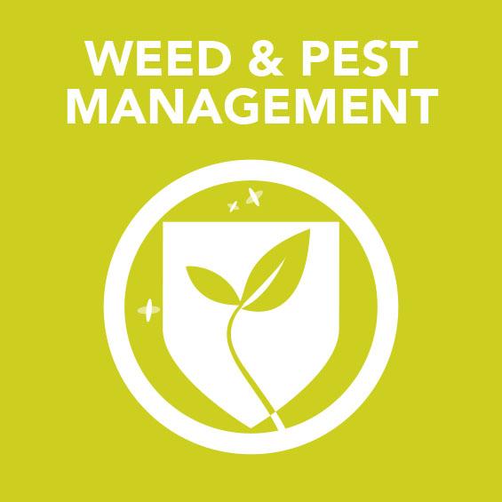 Sq_Weed_Pest_Management.jpg