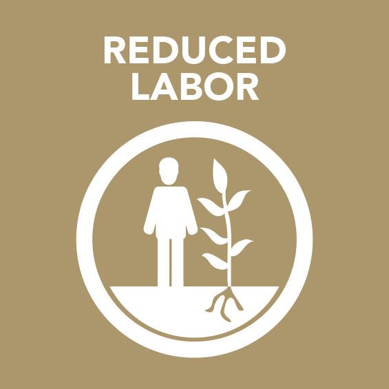 Sq_Reduced_labor.jpg