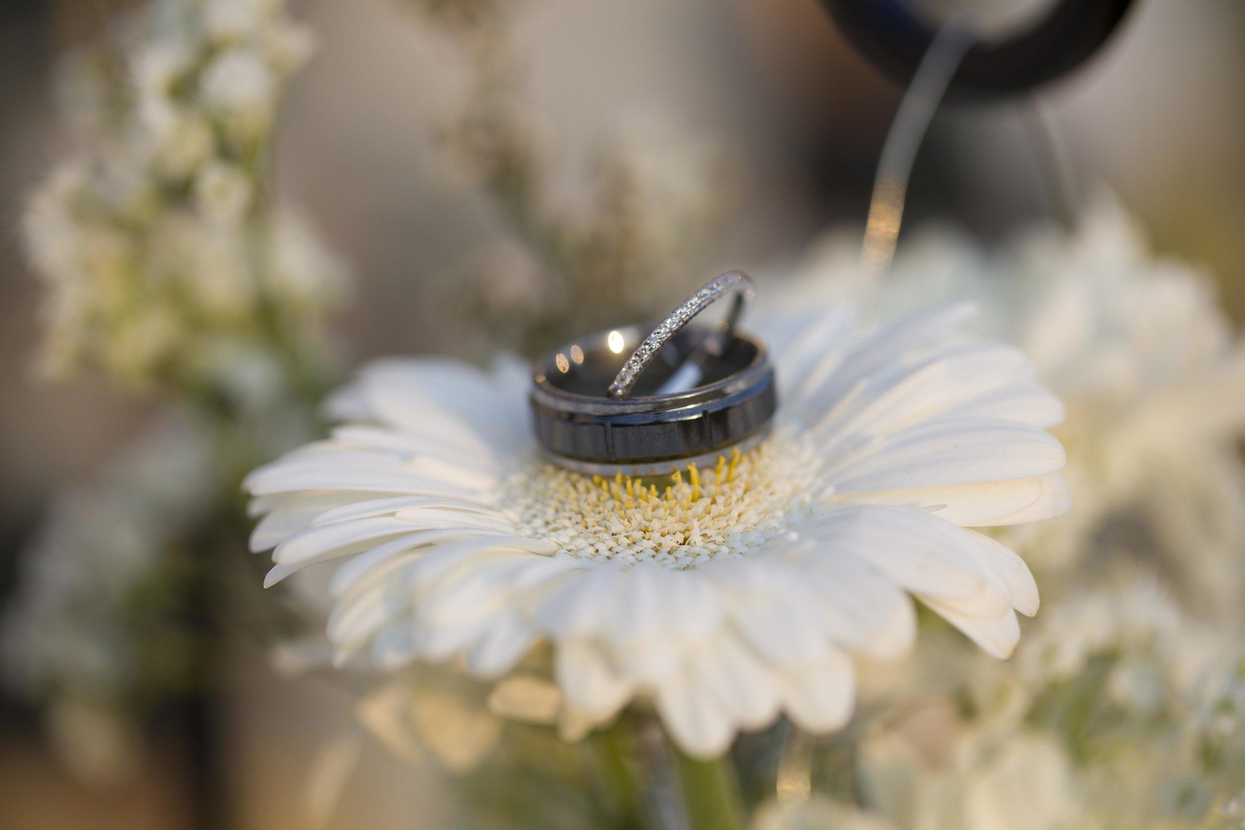 weddingrings.jpg