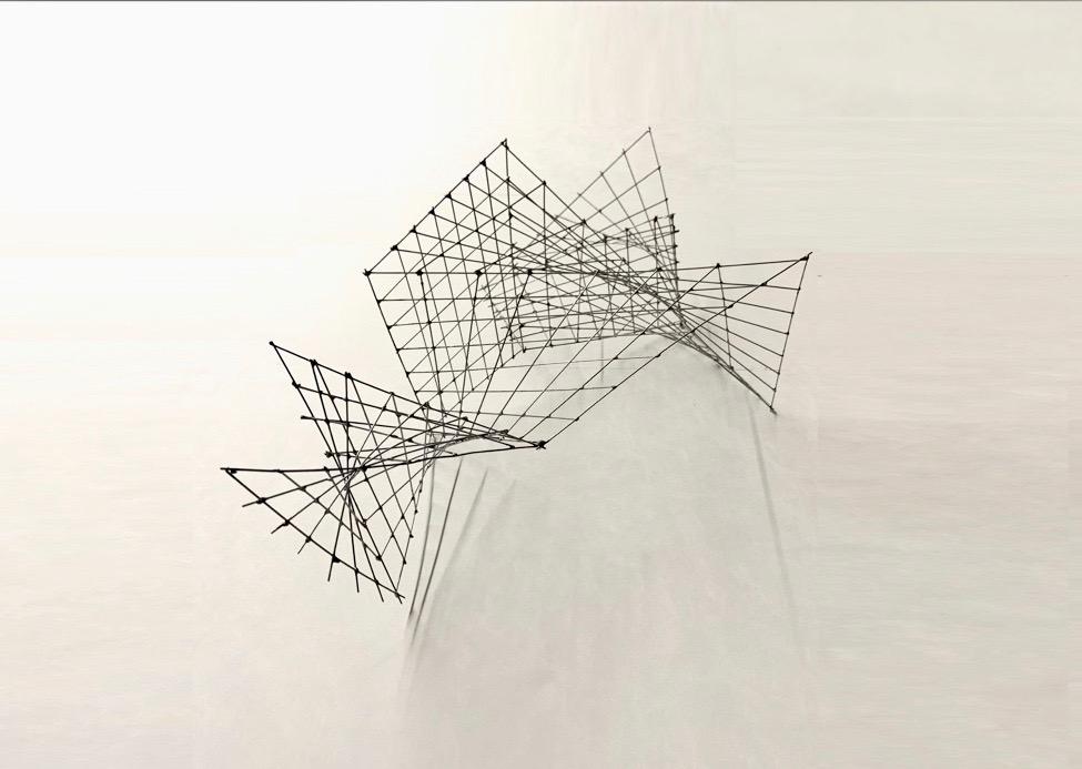 WireDoubleRuledStudy.jpeg