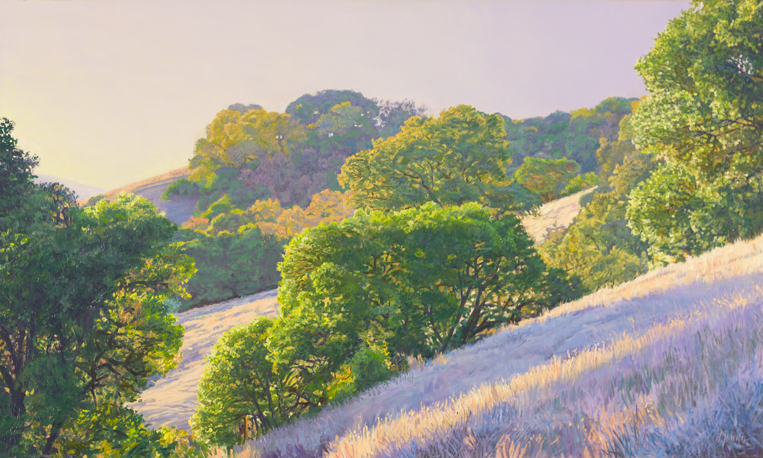 Evening in the Hills