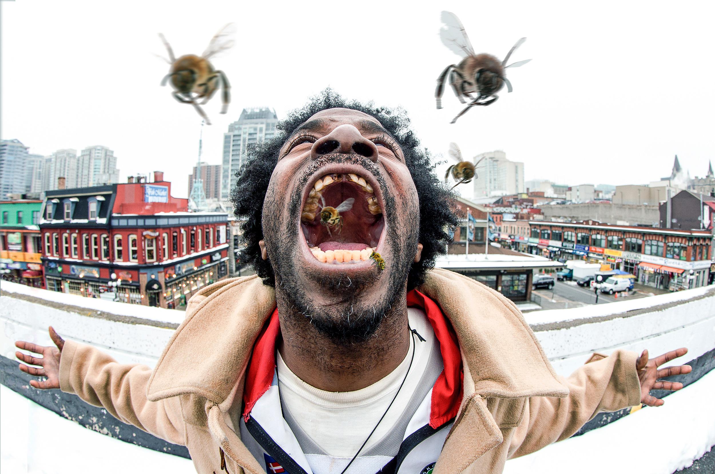 killerbees_w.jpg