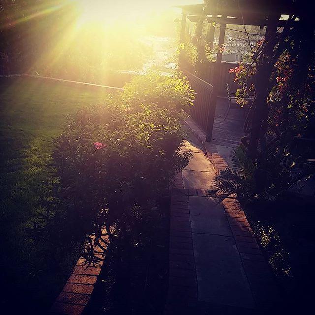 Studio City sunset